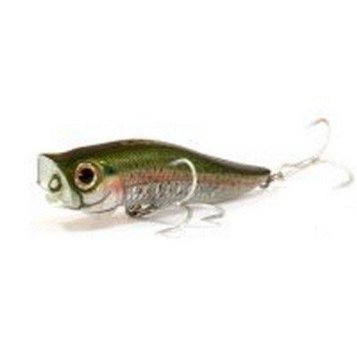 список японских рыболовных фирм
